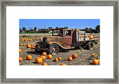 Framed Print featuring the photograph One More Pumpkin by Michael Gordon