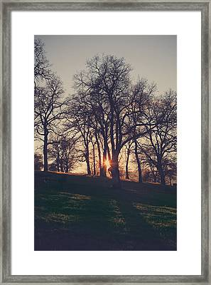One More Try Framed Print by Laurie Search