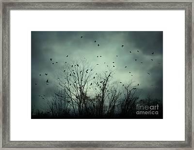 One November Night Framed Print by Sharon Coty