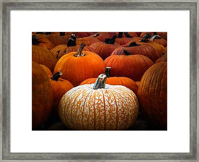 One Of A Kind Framed Print by Karen Wiles