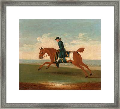 One Of Four Portraits Of Horses - A Chestnut Racehorse Framed Print