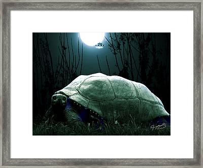 One Of The Ancient Ones Framed Print