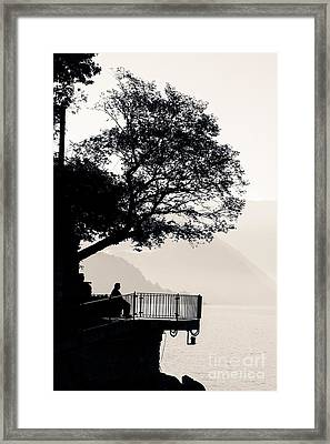 One Old Man Sitting In Shade Of Tree Overlooking Lake Como Framed Print