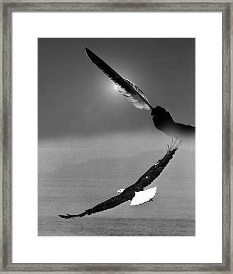 One Power Black And White Framed Print by Paul Eubanks