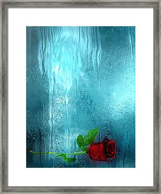 One Rose Left Framed Print