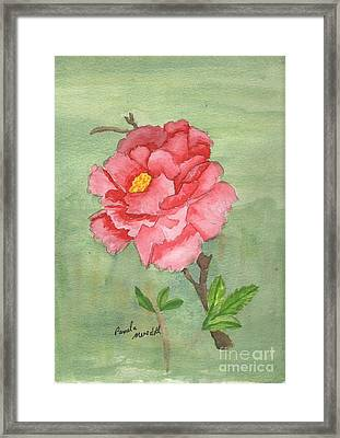 One Rose Framed Print