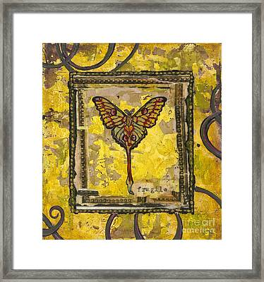 One Framed Print by Sandra Dawson