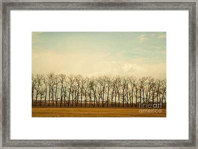 One Season Framed Print
