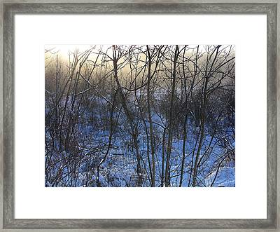 One Solstice Morning In Palenville The Light Broke Through The Dew Framed Print by Terrance DePietro