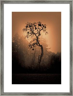 One Stands Alone Framed Print