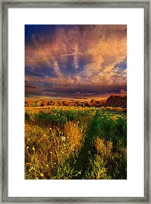 One Step At A Time Framed Print by Phil Koch
