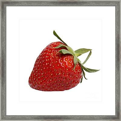 One Strawberry Framed Print