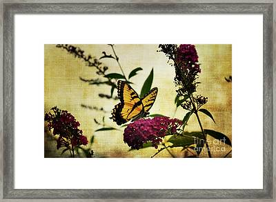 One Summer Day  2 Framed Print