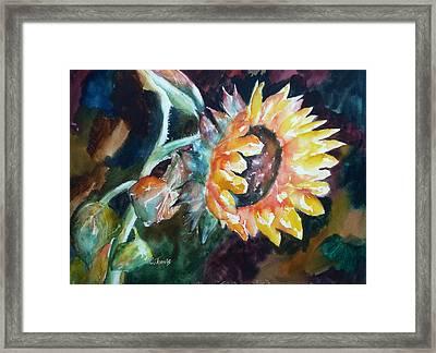 One Sunflower Framed Print