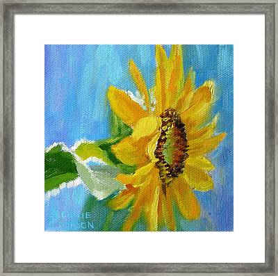 One Sunflower- With Bright Sunshine From Above Framed Print