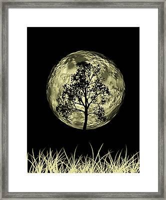 One Tree  Framed Print by Mark Ashkenazi