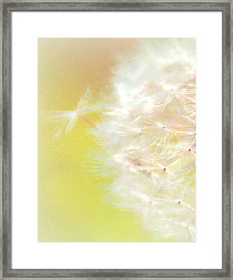 One Wish Framed Print by The Art Of Marilyn Ridoutt-Greene