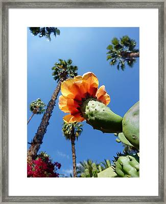 One World One Love  Framed Print by A Rey