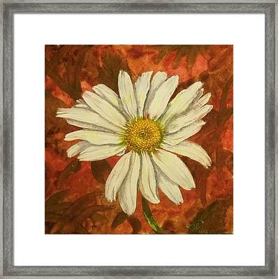 One Yorktown Daisy Framed Print