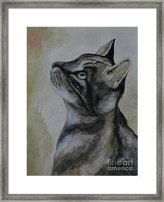 ONI Framed Print