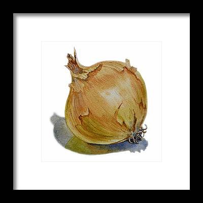 Onion Framed Prints
