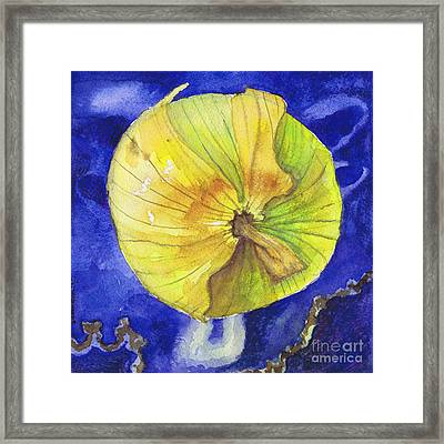 Onion On Blue Tile Framed Print by Susan Herbst