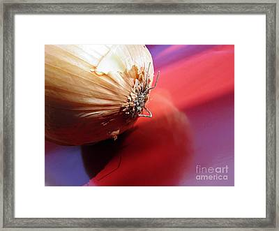 Onion Framed Print by Sarah Loft