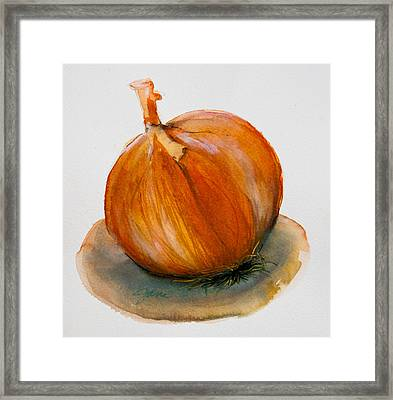 Onion Study Framed Print
