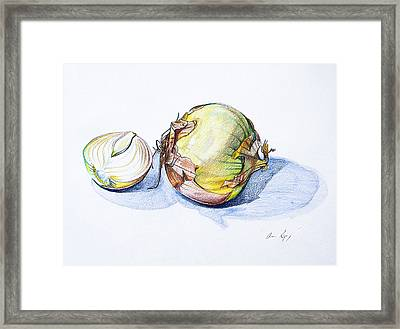 Onions Framed Print by Aaron Spong