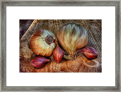 Onions And Scallions Framed Print by Sharon Beth