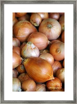 Onions Framed Print by Carlos Caetano
