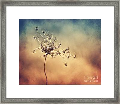 Only Framed Print by Diana Kraleva