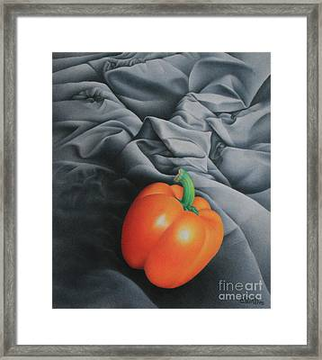 Only Orange Framed Print by Pamela Clements