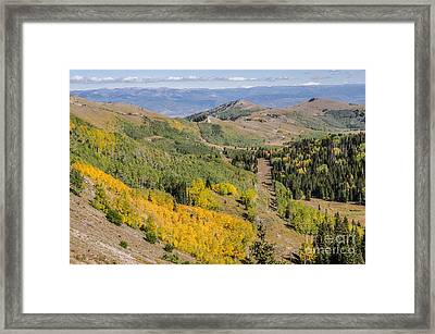 Only The Beginning Framed Print by Sue Smith
