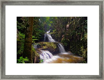 Framed Print featuring the photograph Onomea Falls by Jim Thompson