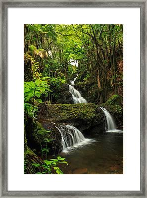 Onomea Falls Framed Print by James Eddy