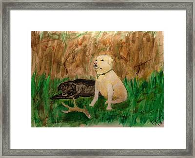 Onyx And Sarge Framed Print