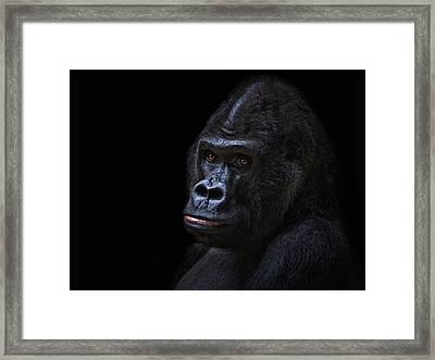 Ooooops Framed Print by Joachim G Pinkawa