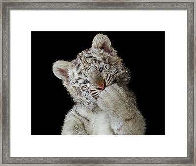 Oops! Did I Scare You? Framed Print