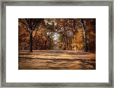 Open For Beauty Framed Print by Jai Johnson