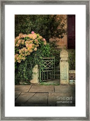 Open Gate Framed Print by Jill Battaglia