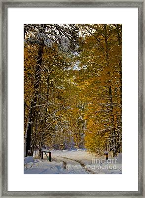 Open Gate Framed Print by Mitch Shindelbower