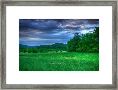 Open Pasture Framed Print by Paul Herrmann