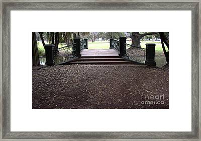 Open Path Framed Print by Gonzalo Teran
