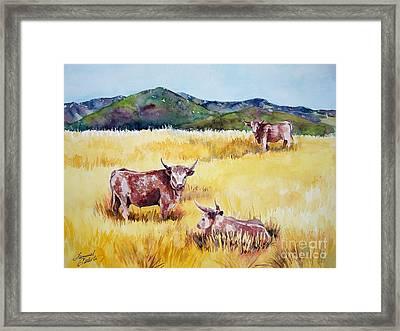 Open Range Patagonia Framed Print by Summer Celeste