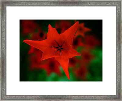 Open Framed Print