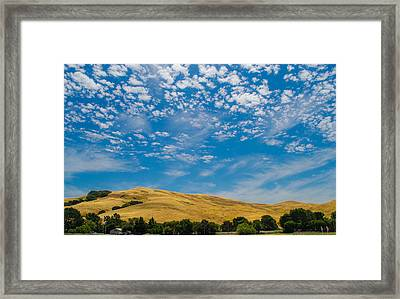 Open Sky Framed Print by Rima Biswas