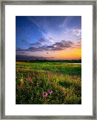 Open Spaces Framed Print by Phil Koch