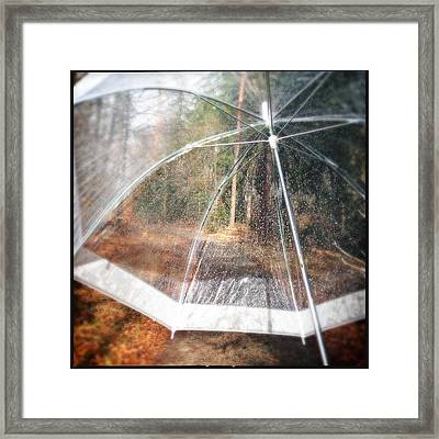 Open Umbrella With Water Drops In The Forest Framed Print