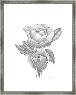 Opening Blooms Framed Print